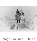 #18697 Photo Of A Male Eskimo Hunter Man With Bow And Arrows Standing Over A Killed Polar Bear