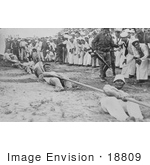 #18809 Photo Of Navy And Marine Corps Men In A Battle Of Tug Of War