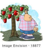 #18877 Chubby Boy Picking a Red Apple From a Tree Clipart by DJArt