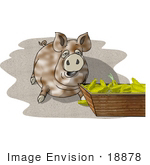 #18878 Fat Farm Pig Eating Clipart