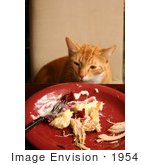 #1954 Cat Sneaking Human Food