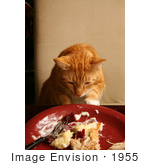 #1955 Cat Sneaking Human Food