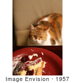 #1957 Cat Sitting At A Dinner Table