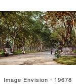 #19678 Photo Of The Lower End Of The Mall In Central Park New York
