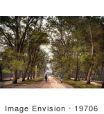 #19706 Photo Of Guards On A Dirt Road In The Great Forest Debrecen Hungary
