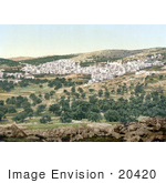 #20420 Historical Stock Photography Of The City Of Hebron On The West Bank