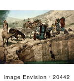 #20442 Historical Stock Photography Of Bedouins With Their Mules Drawing Water With Bags Holy Land