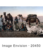 #20450 Historical Stock Photography Of Bedouins And Camels Resting In The Desert Holy Land