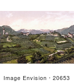 #20653 Historical Photochrome Stock Photography Of Grapevine Winery Hills In San Paolo St Paul'S Eppan Tyrol Austria