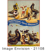 #21108 Stock Photography Of A Circus Trainer Working With Performing Seals And Sea Lions