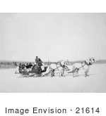 #21614 Stock Photography Of A Team Of Horses Pulling A Us Mail Sled