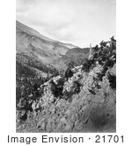 #21701 Stock Photography Of Mountain Slopes Of Mt Shasta California