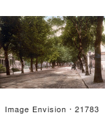 #21783 Historical Stock Photography Of The Tree Lined Promenade Looking Towards Hight Street In Cheltenham Gloucestershire England