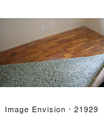 #21929 Stock Photography of Carpet Padding Being Removed to Reveal a Wood Floor by Jamie Voetsch