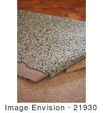 #21930 Stock Photography of Carpet and Padding Being Pulled Away and Revealing a Wood Floor by Jamie Voetsch