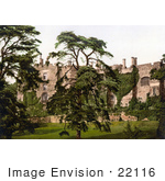 #22116 Historical Stock Photography Of Overgrown Ivy On The Exterior Walls Of The Berkeley Castle In Stroud Gloucestershire England Uk