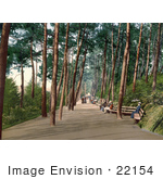 #22154 Historical Stock Photography Of People Sitting On Benches And Strolling Down The Tree Lined Invalids' Walk In Bournemouth Dorset England Uk