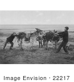#22217 Historical Stock Photography Of Two Boys Trying To Get A Stubborn Donkey To Move On A Beach England
