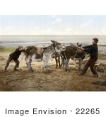 #22265 Historical Stock Photography of Two Boys Trying to Budge a Stubborn Donkey on a Beach in England by JVPD