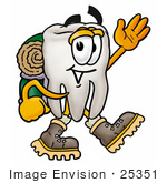 #25351 Clip Art Graphic Of A Human Molar Tooth Character Hiking And Carrying A Backpack