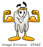 #25362 Clip Art Graphic Of A Human Molar Tooth Character Flexing His Arm Muscles