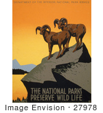#27978 Two Wild Bighorn Sheep (Ovis Canadensis) On A Cliff Overlooking A Lake Surrounded By Mountains Stock Illustration