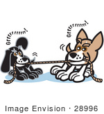 #28996 Cartoon Clip Art Graphic Of A Two Dogs Growling While Playing Tug Of War With A Rope
