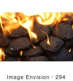 #294 Picture Of Burning Charcoal Briquettes