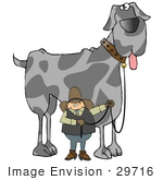 #29716 Clip Art Graphic Of A Proud Cowboy Holding The Leash To His Giant Great Dane Dog