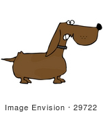 #29722 Clip Art Graphic of a Little Dachshund Dog Growling While Guarding His Property by DJArt