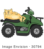 #30794 Clip Art Graphic Of A Lazy Orange Cat Relaxing On The Seat Of A Green Quad