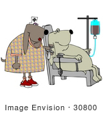 #30800 Clip Art Graphic of a Female Nurse Dog Holding A Needle And Preparing To Give A Dog Patient With An Iv A Shot At The Hospital by DJArt