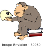 #30960 Clip Art Graphic Of A Cartoon Parody Of Rheinhold'S &Quot;Philosophizing Monkey&Quot; Showing A Wise Chimp Seated On Books And Staring At A Human Skull