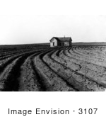 #3107 Tilled Rows