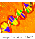#31462 Dna Double Helix 3d Illustration