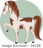 #34128 Clip Art Graphic Of A Brown And White Pinto Horse Prancing