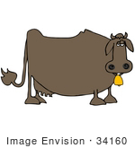 #34160 Clip Art Graphic of a Lonely Brown Fat Cow Wearing A Gold Bell On A Dairy Farm by DJArt