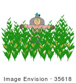 #35618 Clip Art Graphic Of A Scarecrow With A Bird Nesting In His Hat In The Center Of A Corn Crop