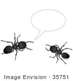 #35751 Clip Art Graphic Of Two Black Sugar Ants Holding A Conversation Includes A Text Bubble