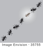 #35755 Clip Art Graphic Of Seven Sugar Ants One Glowing In A Line Invading A Kitchen