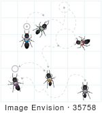#35758 Clip Art Graphic Of Numbered Black Sugar Ants Wandering Along Trails With Circles And Arrows