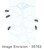 #35763 Clip Art Graphic Of Five Black Sugar Ants Looking At Blueprints