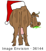 #36144 Clip Art Graphic Of A Festive Christmas Cow With A Santa Hat On His Butt Grazing On Grass