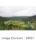 #36521 Stock Photo of a Scenic View Of Hanalei River Flowing Through Hanalei Valley In Northern Kauai, Hawaii by Jamie Voetsch