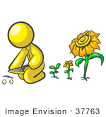 #37763 Clip Art Graphic Of A Yellow Guy Character Planting Sunflowers