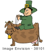 #38101 Clip Art Graphic Of A St Paddy'S Day Leprechaun Riding A Cow