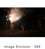 #399 Image Of A Pit Bull Excited By Holiday Fireworks