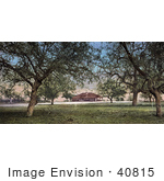 #40815 Stock Photo Of The Lawn And Trees Near The Country Club In Pasadena California