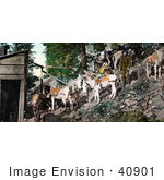 #40901 Stock Photo Of Men And Burros At Silver Mine In Colorado