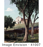 #41007 Stock Photo Of Trees And A Garden Near The Mission San Diego De Alcala In California